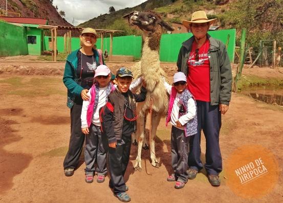 Lhama no Cochahuasi Animal Sanctuary