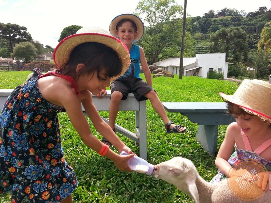Amamentando as ovelhinhas na Casa da Ovelha